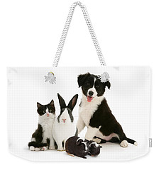 Weekender Tote Bag featuring the photograph Back-and-white Is Alright by Warren Photographic