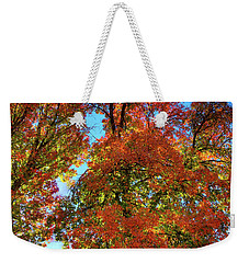 Weekender Tote Bag featuring the photograph Backlit Autumn by David Patterson