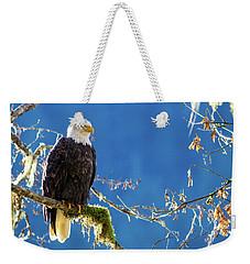 Backlit Bald Eagle In Squamish Weekender Tote Bag