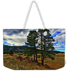 Weekender Tote Bag featuring the photograph Backlit Pine by Dan Miller