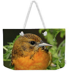 Weekender Tote Bag featuring the photograph Baltimore Oriole by Debbie Stahre