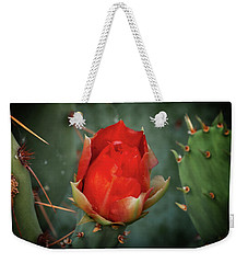 Weekender Tote Bag featuring the photograph Be My Valentine by Rick Furmanek