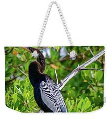 Beautiful Anhinga Weekender Tote Bag