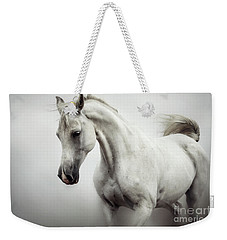 Weekender Tote Bag featuring the photograph Beautiful White Horse On The White Background by Dimitar Hristov