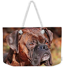 Weekender Tote Bag featuring the photograph Boxer by Debbie Stahre
