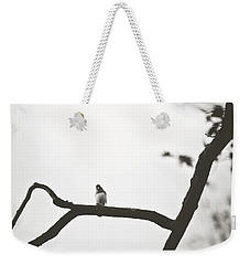 Weekender Tote Bag featuring the photograph Branching Out by Sue Collura