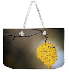 Weekender Tote Bag featuring the photograph Bright Fall Leaf 7 by Michael Arend