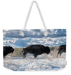 Weekender Tote Bag featuring the photograph Buffalo Charge.  Bison Running, Ground Shaking When They Trampled Through Arsenal Wildlife Refuge by OLena Art Brand