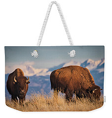 Buffalo Grazing At Dawn Weekender Tote Bag