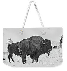 Buffalo In The Snow Weekender Tote Bag