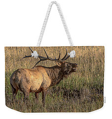 Weekender Tote Bag featuring the photograph Bugling Bull Elk 7777 by Donald Brown