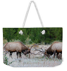 Weekender Tote Bag featuring the photograph Bull Elk Battle Rocky Mountain National Park by Nathan Bush