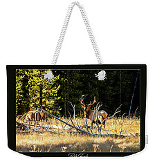 Weekender Tote Bag featuring the photograph Bull Elk by Pete Federico