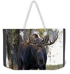 Bull Moose Approaching Weekender Tote Bag