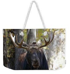 Bull Moose Close Up Weekender Tote Bag
