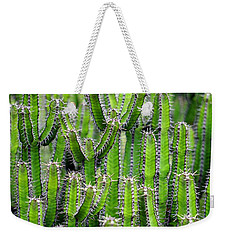 Weekender Tote Bag featuring the photograph Cacti Wall by Top Wallpapers