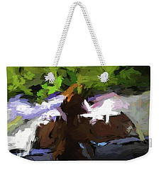 Cat On The Porch Weekender Tote Bag