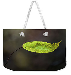Weekender Tote Bag featuring the photograph Catching Raindrops  by Michael Arend
