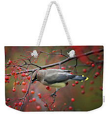 Weekender Tote Bag featuring the photograph Cedar Waxwing 102206 by Rick Veldman