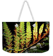 Weekender Tote Bag featuring the photograph Change Of Seasons by Bill Wakeley