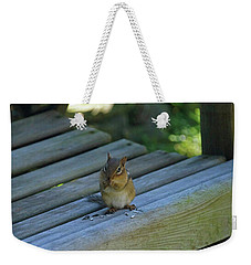 Weekender Tote Bag featuring the photograph Chipmunk Eating Seeds by Angela Murdock