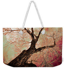 Weekender Tote Bag featuring the photograph Climbing Red Fiery by James BO Insogna