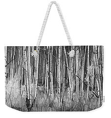 Weekender Tote Bag featuring the photograph Colorado Autumn Wonder Panorama In Black And White  by OLena Art Brand