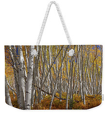 Weekender Tote Bag featuring the photograph Colorful Stick Forest by James BO Insogna