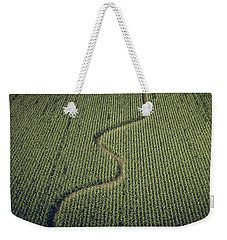 Weekender Tote Bag featuring the photograph Corn Field by Steve Stanger