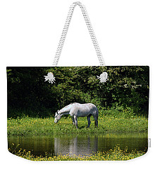Cumbria. Ulverston. Horse By The Canal Weekender Tote Bag