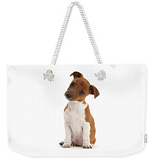 Weekender Tote Bag featuring the photograph Curious by Warren Photographic