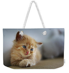 Cute Orange Kitty Weekender Tote Bag