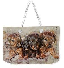 Dachshund Three Puppies Weekender Tote Bag
