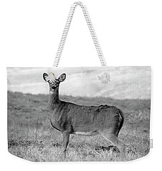 Weekender Tote Bag featuring the photograph Deer In Black And White by Angela Murdock
