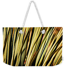 Weekender Tote Bag featuring the photograph Desert Grasses II by Leda Robertson