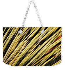 Weekender Tote Bag featuring the photograph Desert Grasses IIi by Leda Robertson