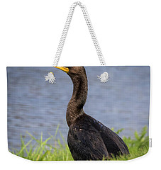 Weekender Tote Bag featuring the photograph Double-crested Cormorant by Ricky L Jones