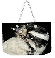 Weekender Tote Bag featuring the photograph Downy Woodpecker Female by Debbie Stahre