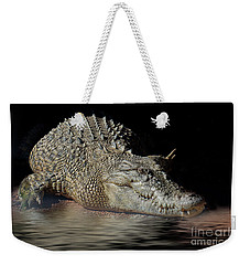 Weekender Tote Bag featuring the photograph Dozy Crocodile by Elaine Teague
