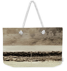 Weekender Tote Bag featuring the photograph Dust Of The Migration by Kay Brewer