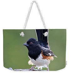 Weekender Tote Bag featuring the photograph Eastern Towhee 50413 by Rick Veldman