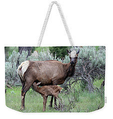 Elk Cow And Calf In Yellowstone Weekender Tote Bag