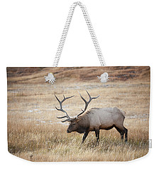 Weekender Tote Bag featuring the photograph Elk In Yellowstone National Park by Mark Duehmig