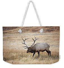 Elk In Yellowstone National Park Weekender Tote Bag