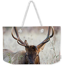 Weekender Tote Bag featuring the photograph Elk Portrait by Nathan Bush
