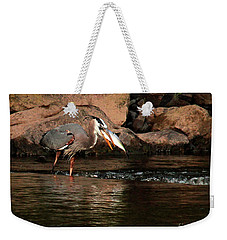 Weekender Tote Bag featuring the photograph Eye To Eye by Debbie Stahre