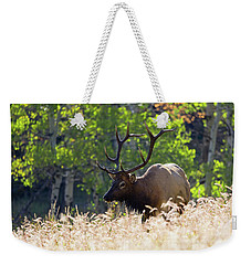 Weekender Tote Bag featuring the photograph Fall Color Rocky Mountain Bull Elk by Nathan Bush