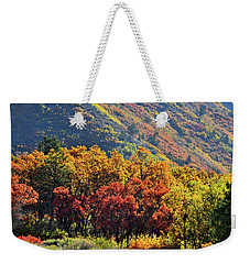 Fall Colors Along Avalanche Creek Road Weekender Tote Bag
