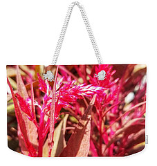 Weekender Tote Bag featuring the photograph Fall Floral Bouquet  by Rachel Hannah