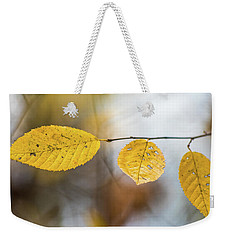 Weekender Tote Bag featuring the photograph Fall In Triplicate by Michael Arend